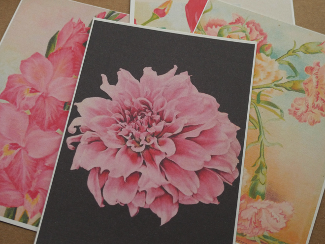 postkarte-printable-blumen-paperdesc-2017