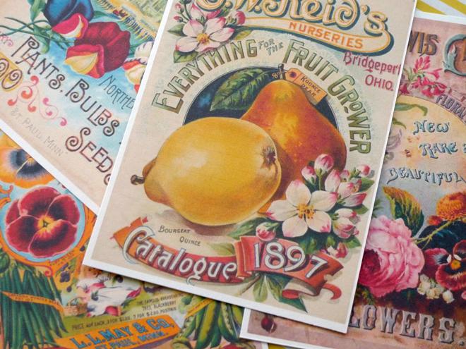 vintage-postkarte-blume-paperdesc-2017