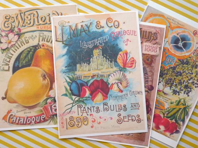 vintage-postkarte-blumen-paperdesc-2017